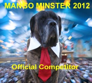 Competitor Badge for the Mango Minster Compitition 2012