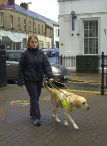 Me working my dog Ushi in my local town.  This was used in our local paper.